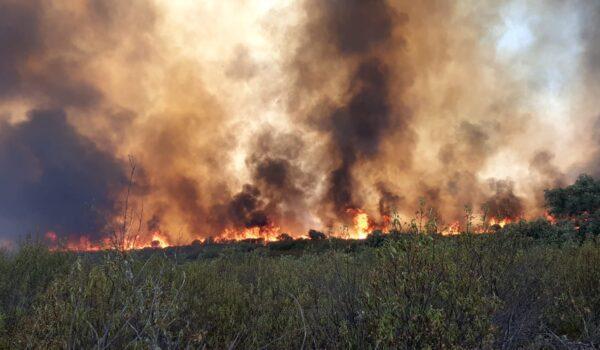 Declaro un incendio en el Puerto del Calatraveño, Espiel