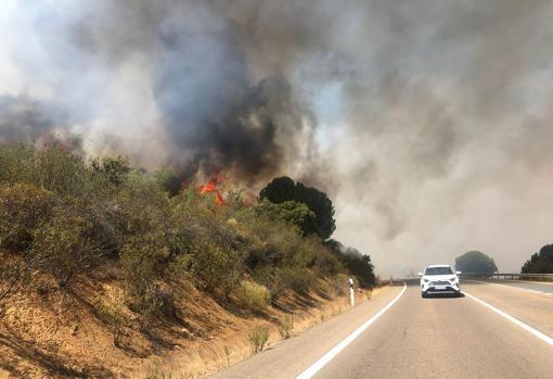 Ya han ardido 600 hectáreas en el incendio del puerto del Calatraveño